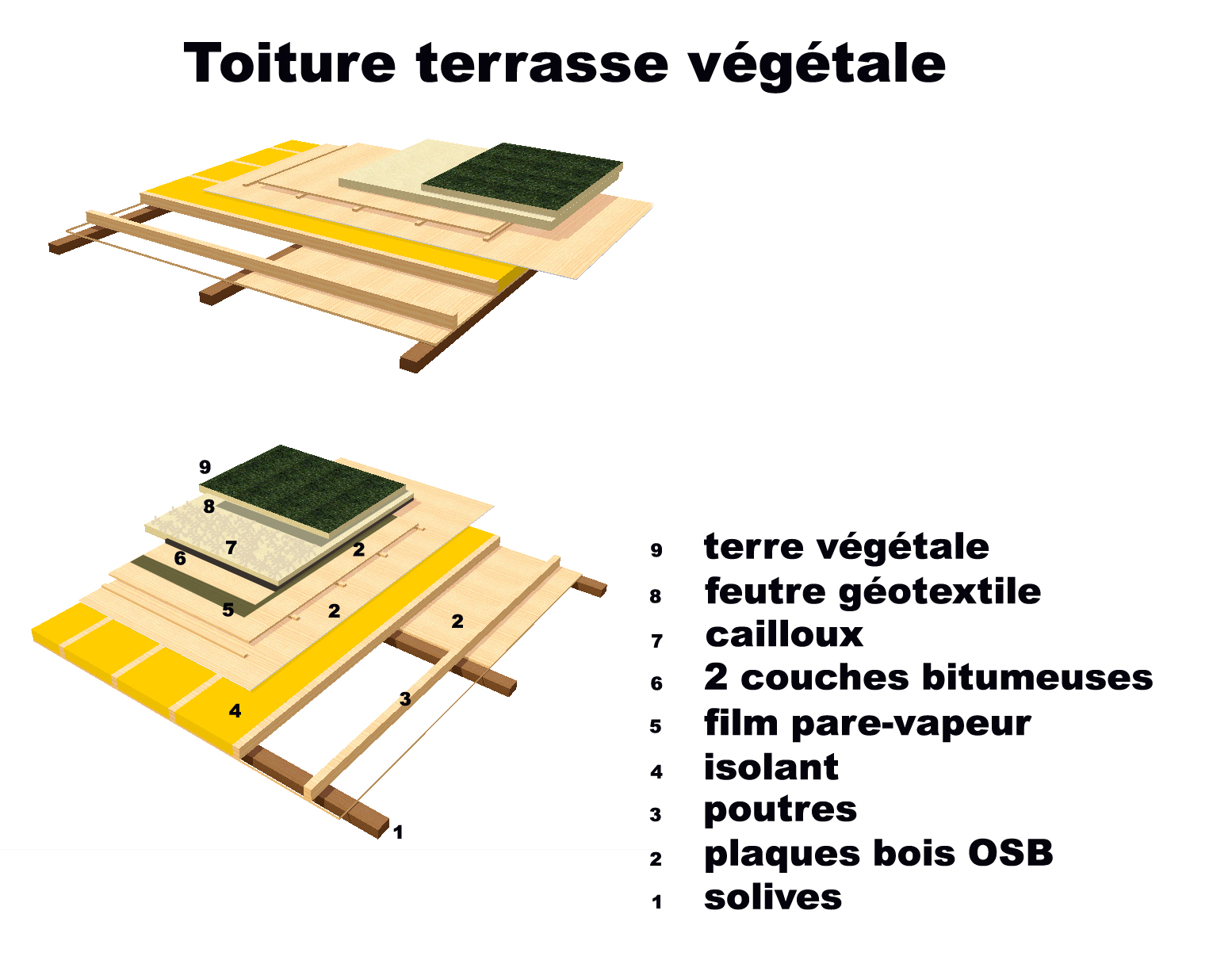 toit terrasse vegetal plan maison contemporaine. Black Bedroom Furniture Sets. Home Design Ideas